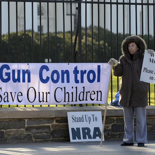 Supporters Of Gun Control Outside The White House